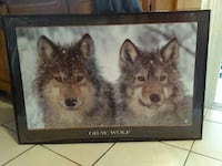 """Wolf picture in frame 36 1/2"""" x 24 1/4"""" Charter Township of Clinton, 48035"""