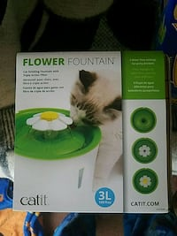 Cat fountain and  cat food