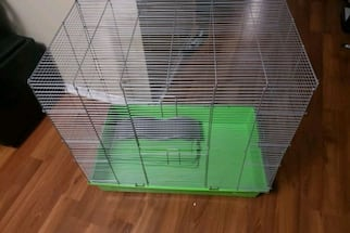 Animal critter cage.