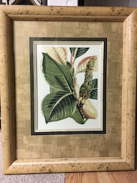 green leaf plant painting with brown wooden frame 3178 km