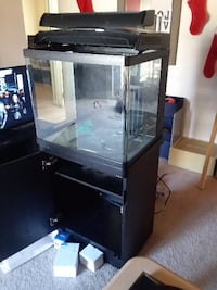 rectangular glass tank with black steel frame
