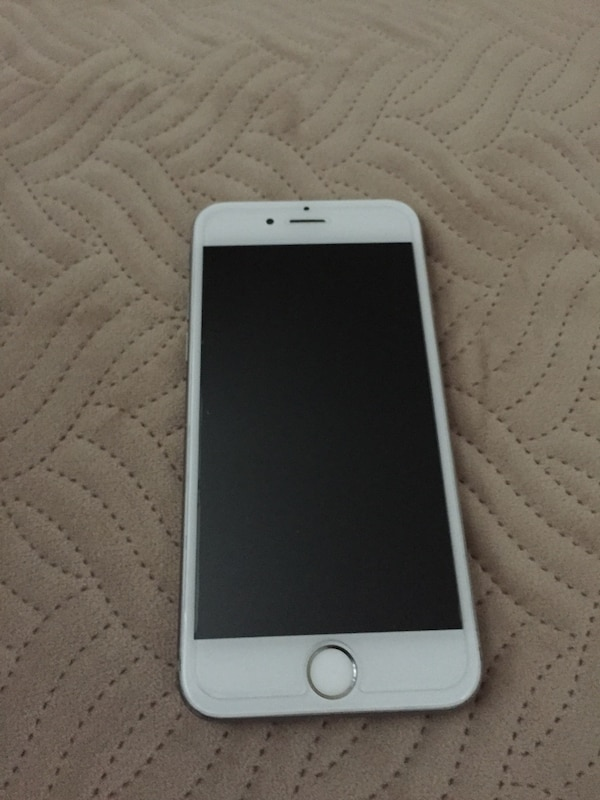 Silver iphone 6 with black case
