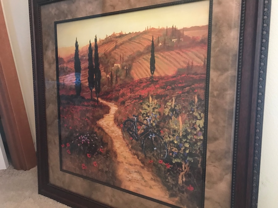 Photo Large Framed Print of Poppies / Down the Lane by Steve Thoms