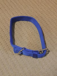 blue and black leather belt London, N5Z 4P4