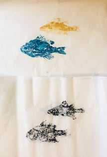 Bluegill and yellow bass prints
