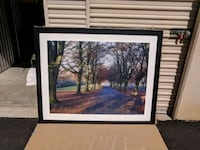 Large framed park scene photograph Tucson, 85719
