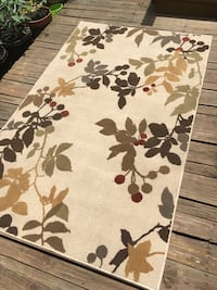 5 x 8 Leaf Pattern Area Rug - Very Clean  Chicago, 60622