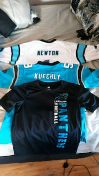 Carolina Panthers Jerseys Waynesboro, 17268