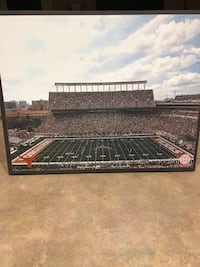 Texas Longhorns Stadium Canvas Picture from Getty Images  Cibolo, 78108