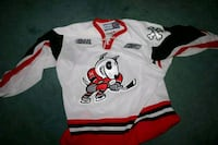 In search of ice dogs jersey  Thorold, L2V 3X7