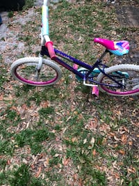 20 inch  purple and pink bicycle Jacksonville, 32225