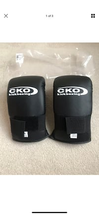 CKO Kickboxing Gloves Vienna