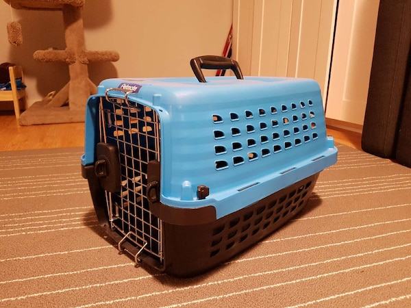 Used Petmate Cat Carrier For Sale In Calgary Letgo