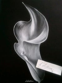 White charcoal on black paper Chicago, 60660