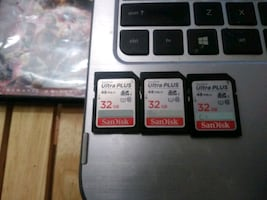 Full size SD cards.