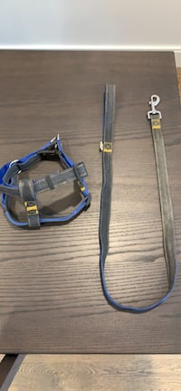 Matching Dog Harness and Leash Burlington, L7S 2H7