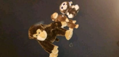Monkey teddy bears