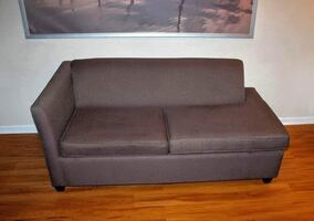 PERFECT Condo Sized Pull Out Sofabed