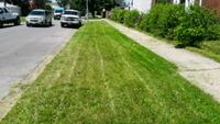 Lawn mowing Chicago, 60630