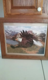 brown and white eagle over mountain and sea painting with brown frame Adamsville, 38310