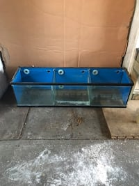 33 gallon long with 2 dividers