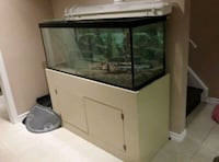 Aquarium - fast sell!  Brampton