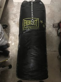Everlast Punching Bag  Orlando, 32805