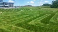 Lawn mowing, residential and commercial. Springfield