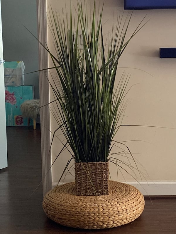 Artificial Plant and stand b40c688e-1f6b-4aa6-bfc1-2f93287f7184