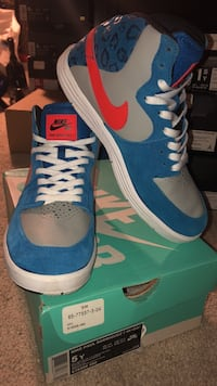 blue-and-white Nike low top sneakers Columbia, 21045