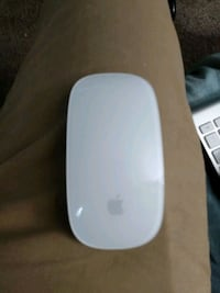 Apple Magic mouse (lightning cable rechargable) Pleasant Valley, 12569