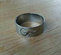 Brand New Sizes 9 or 10 Stainless Steel Ring