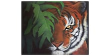 Acrylic paintings and more