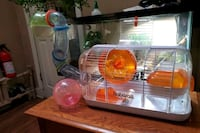Hamster cage and critter krawler Bloomfield, 07003