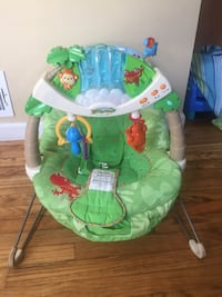baby's green and blue bouncer Potomac, 20854