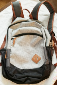 gray and brown backpack screenshot Alvin