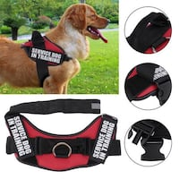 Dog Service In Training Harness
