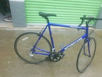 blue and white  road bike New