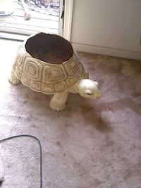 Large turtle planter for indoor only Alexandria, 22315