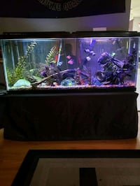 55 gallon aquarium with everything included. Calgary, T3K
