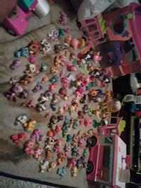 All is   lps vans and. Figures and Hagerstown