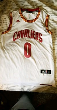 Kevin Love The Finals jersey Elyria, 44035