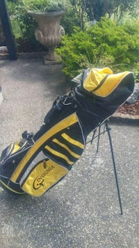 Insignia golf bag with solar phone charger Surrey