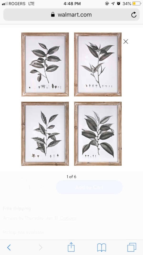 IMAX Aba botanical wall prints - new in box e764ed89-90e2-4d6a-a8ef-4c922e3fb4c8