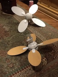 Very nice lamp fans can change colours