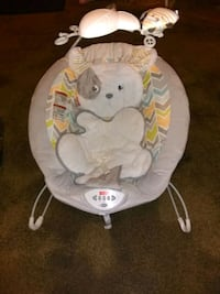Fisher Price bear bouncer seat