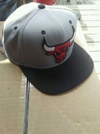Chicago Bulls Snap Back Riverview