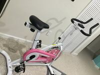 pink and black stationary bike Lorton, 22079