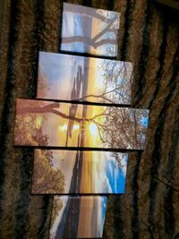 5 piece stretched tree sunset canvas