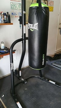 Everlast punching bag, stand and gloves